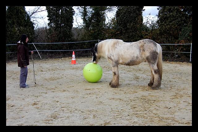 Boing boing...Kaiser et sa gym' ou le futur footballeur Ballon13