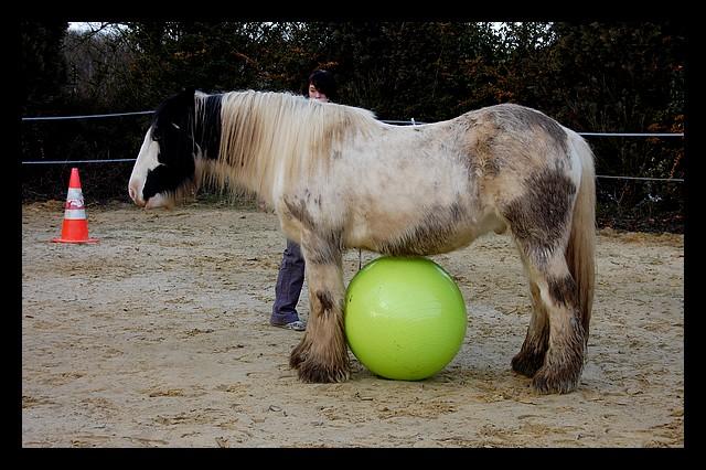 Boing boing...Kaiser et sa gym' ou le futur footballeur Ballon14