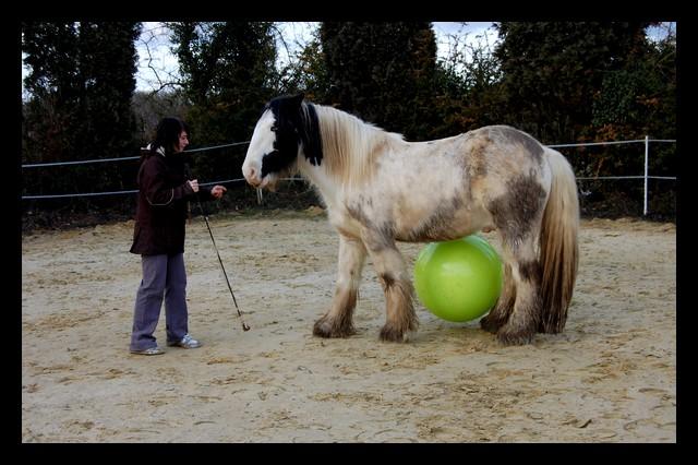 Boing boing...Kaiser et sa gym' ou le futur footballeur Ballon15