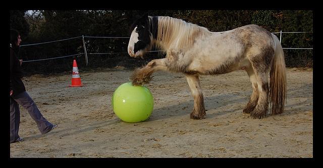 Boing boing...Kaiser et sa gym' ou le futur footballeur Ballon17