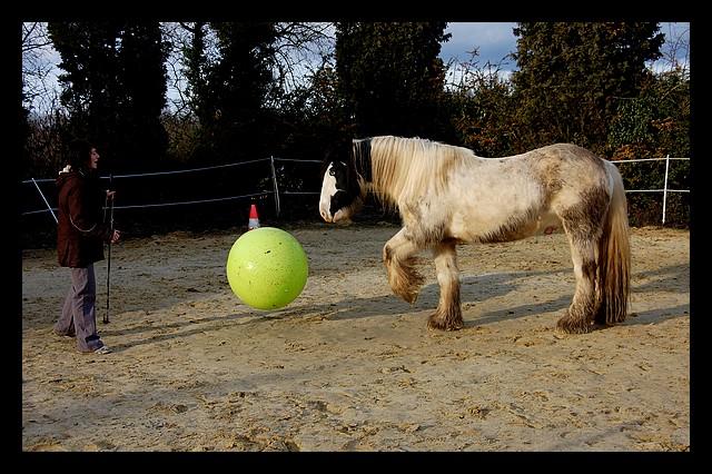 Boing boing...Kaiser et sa gym' ou le futur footballeur Ballon28