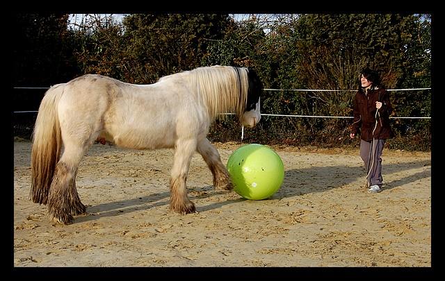 Boing boing...Kaiser et sa gym' ou le futur footballeur Ballon29
