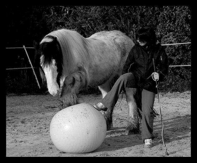 Boing boing...Kaiser et sa gym' ou le futur footballeur Ballon34
