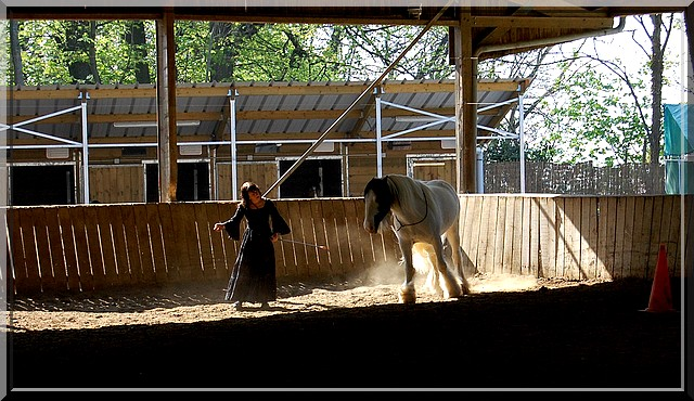 Spectacle le 25 mai 2010 au centre équestre La Montagne Pestac17