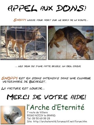 SNOOPY BA LAISSE POUR MORT A L OEIL CREVE ET LA PATTE CASSE EN SOINS INTENSIF - Page 2 Affich10