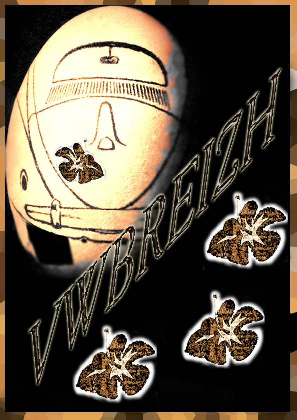 Des tee-shirt, sweat etc... VWbreizh - Page 5 Vwb_co12