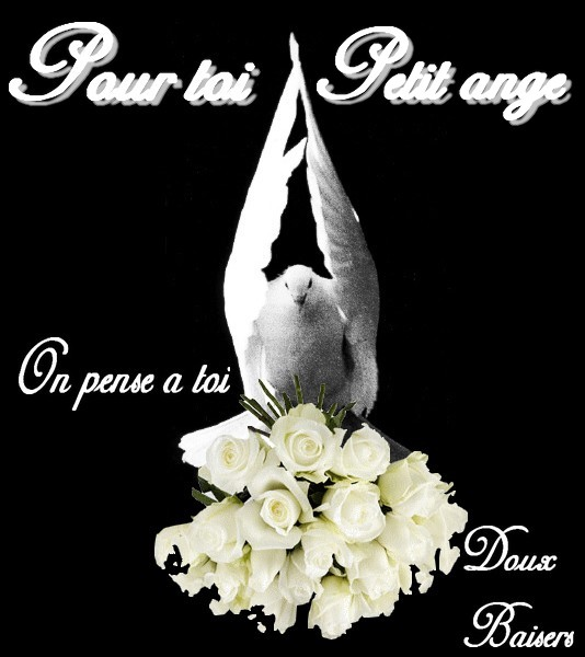 TENDRES PENSEES 1_ange13
