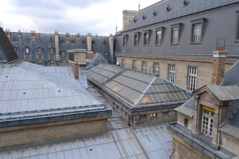 Visite de la Sorbonne - Page 3 P1060618