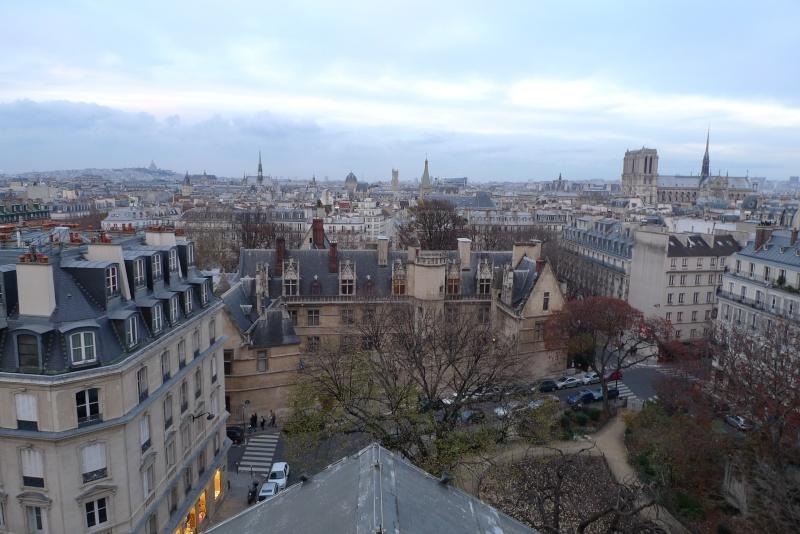 Visite de la Sorbonne - Page 3 P1060620