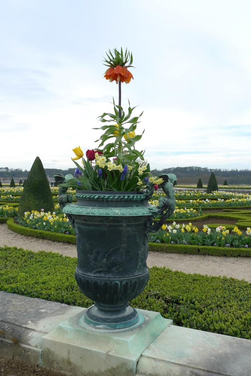 Vos photos du château de Versailles - Page 4 P1080026