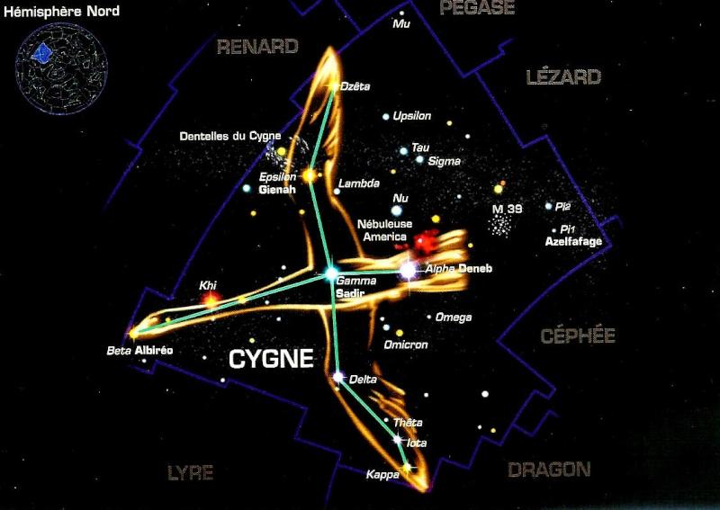 CyGnuS e-SporT Cygne-10