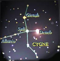 CyGnuS e-SporT Cygne10