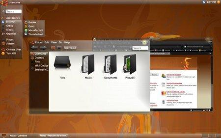 Ubuntu 8.10 Intrepid Ibex Worldi10