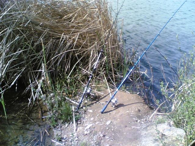 Día de Pesca cerca de La Bañeza 10042012