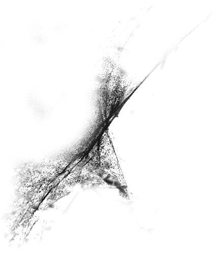 Toiles d'Araignés 0711
