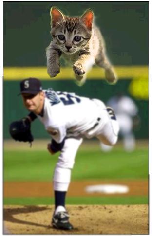 images drôles de baseball Baseba10
