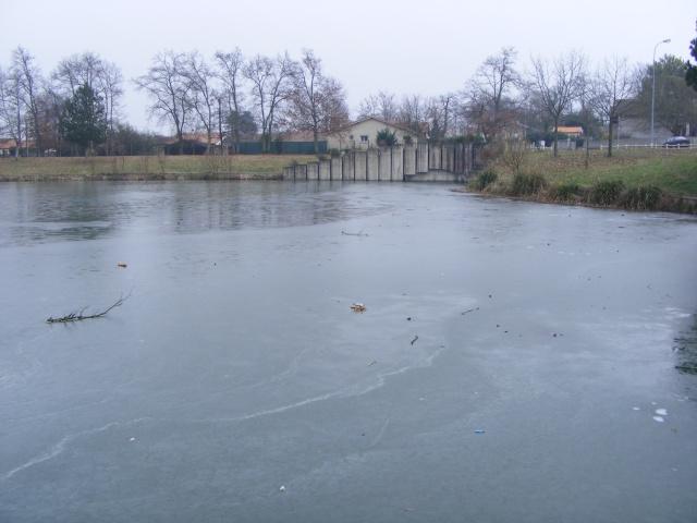vague de froid sur l'aquitaine!!!!!!!!!!! 2008_012