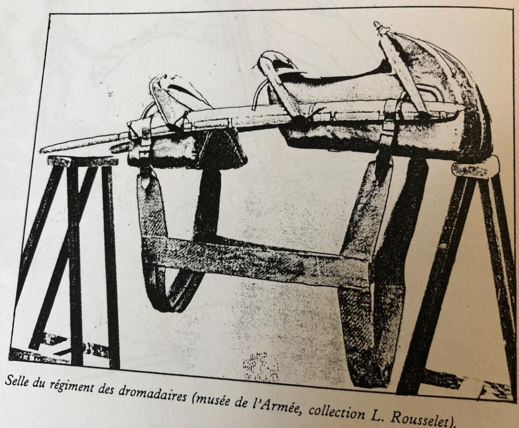 Trompette du Régiment des Dromadaires en 1800 (180 mm) - Page 4 Captu181