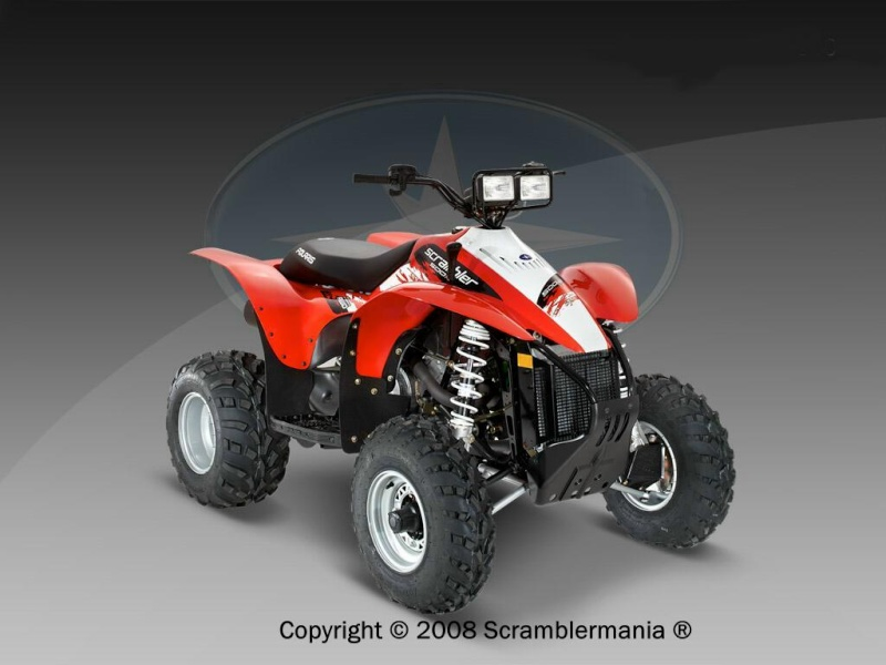 2009 20094x10