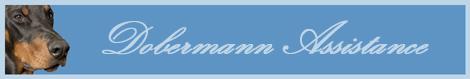 Dobermann Assistance Bannie10