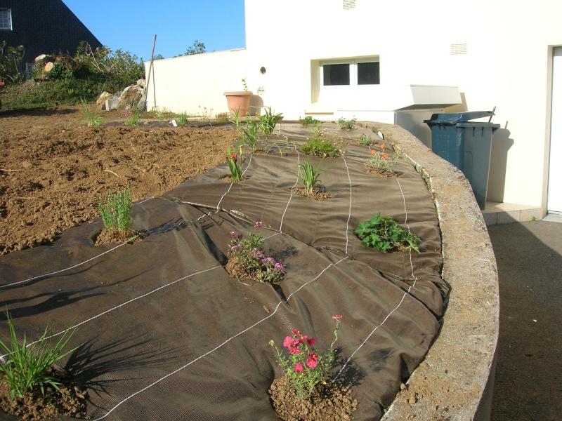 petit jardin de ville à Quimper (finistère sud ) Dscn1104