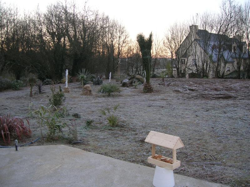 Un hiver + froid dans le Finistère. Dscn1311