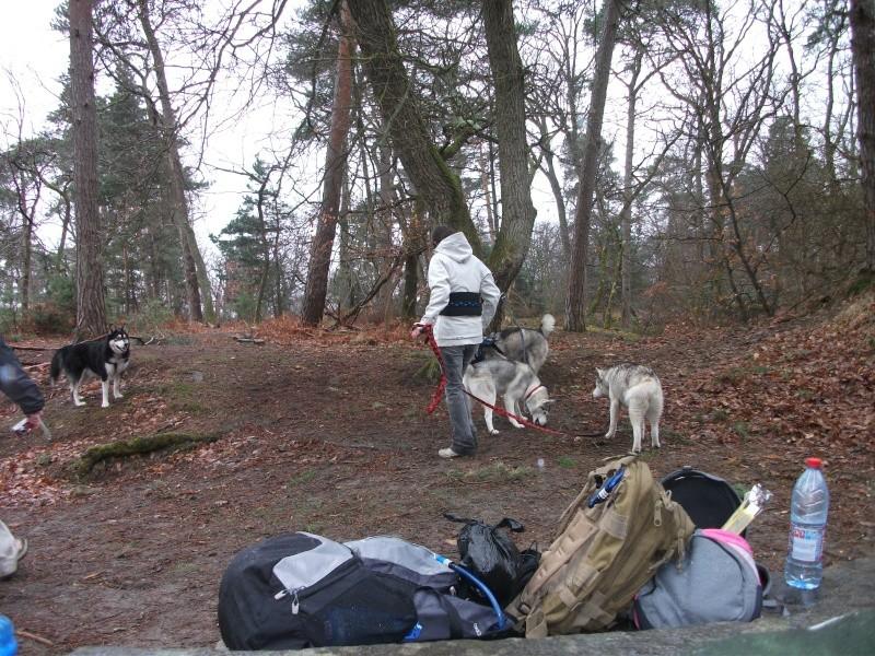 Rencontre et pic nic en foret de fontainebleau le 28 mars 2010 - Page 6 Dscf2145