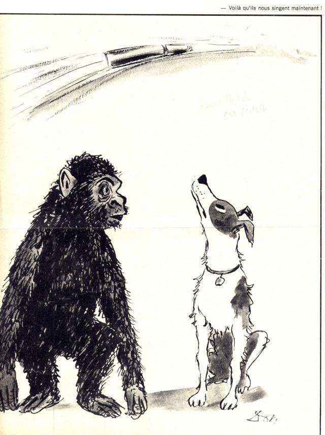 les animaux spatiaux - Page 2 Vostok10