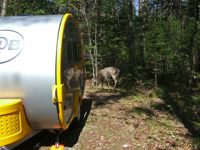 Vos photos de camping dont vous êtes fiers ... Dscf3610