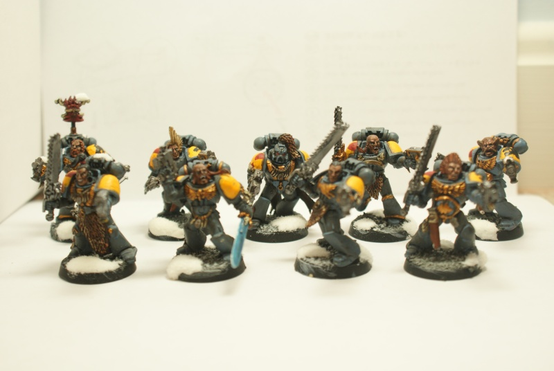 space - Space Wolves Painting Blog Dsc01621