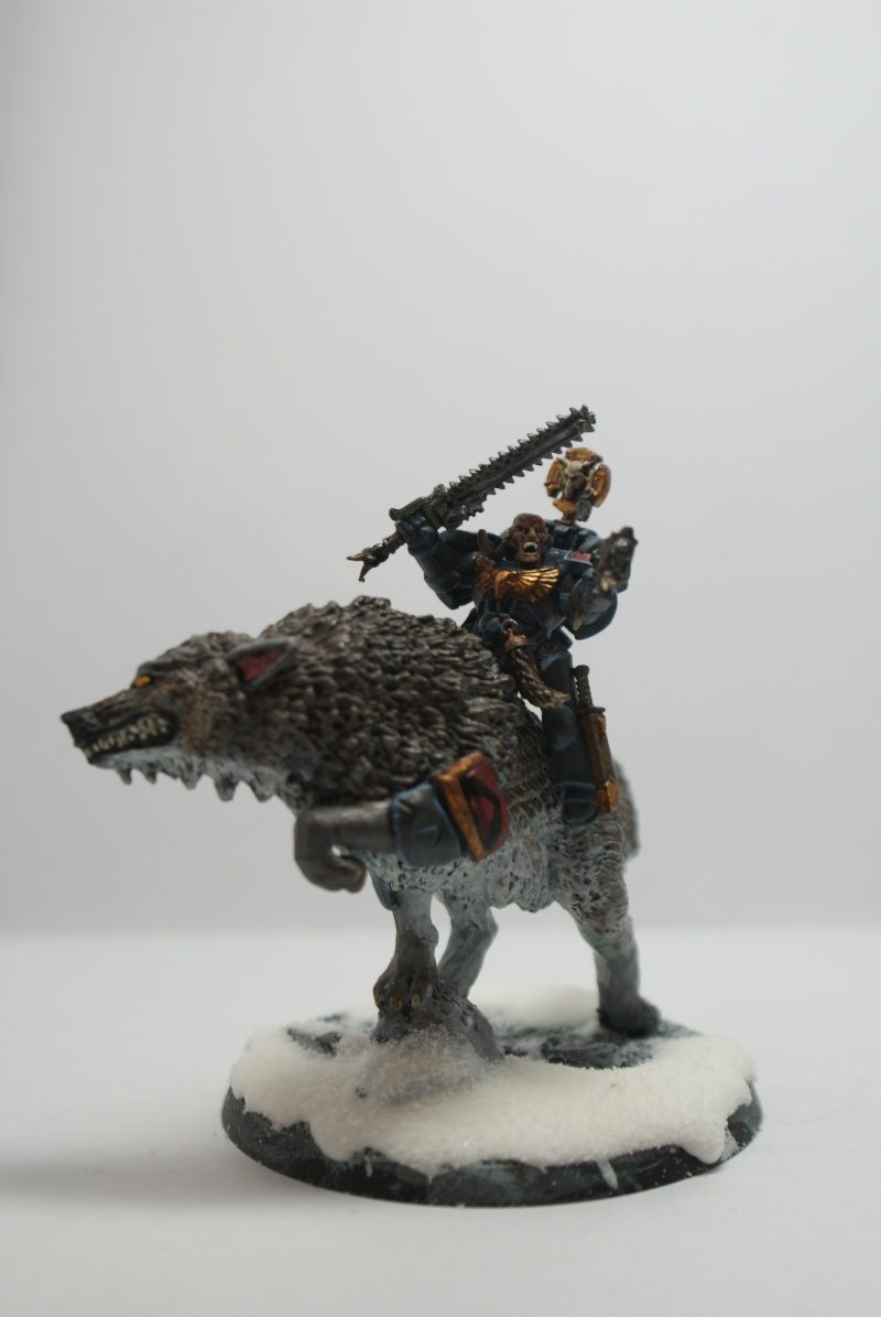 space - Space Wolves Painting Blog Dsc01710