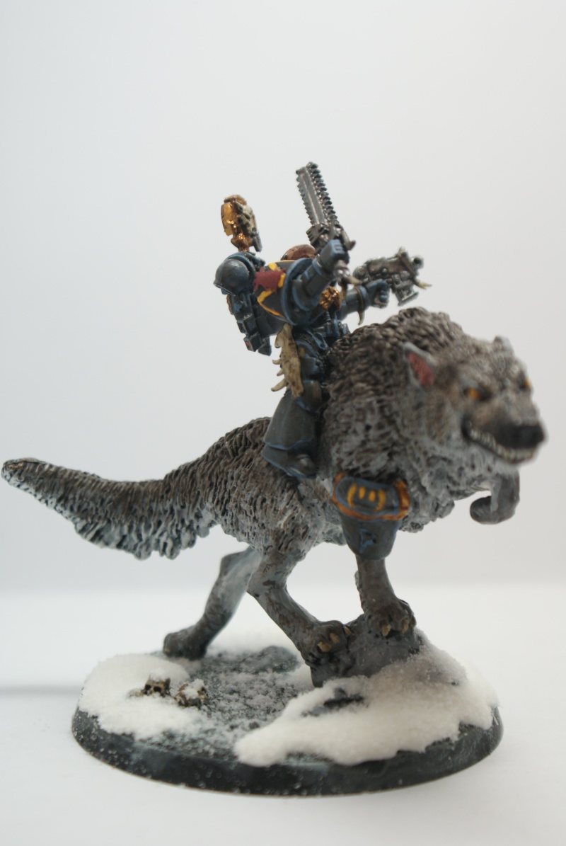 space - Space Wolves Painting Blog Dsc01711
