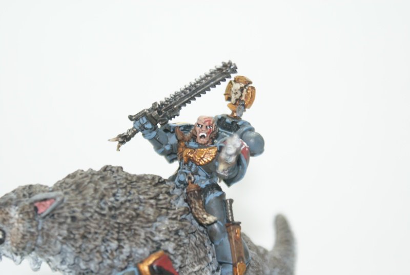 space - Space Wolves Painting Blog Dsc01713
