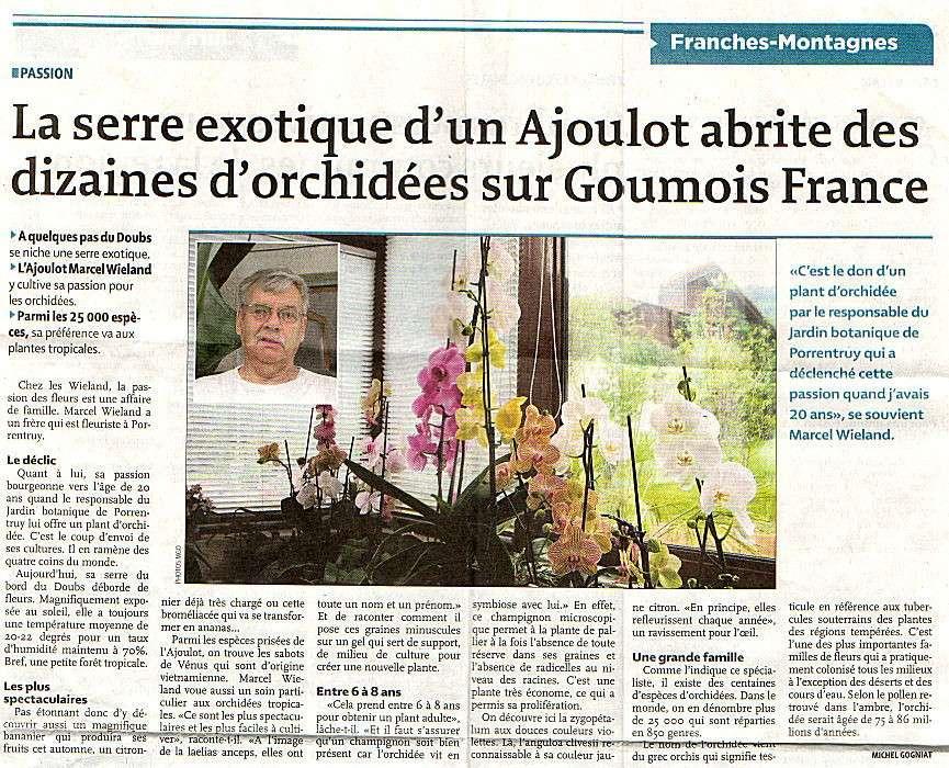 Journal Quotidien jurassien - 15/06/2010 - Serre exotique Orchid11