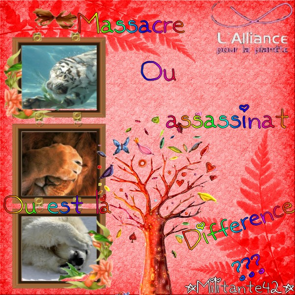 Mes petits montages Differ10