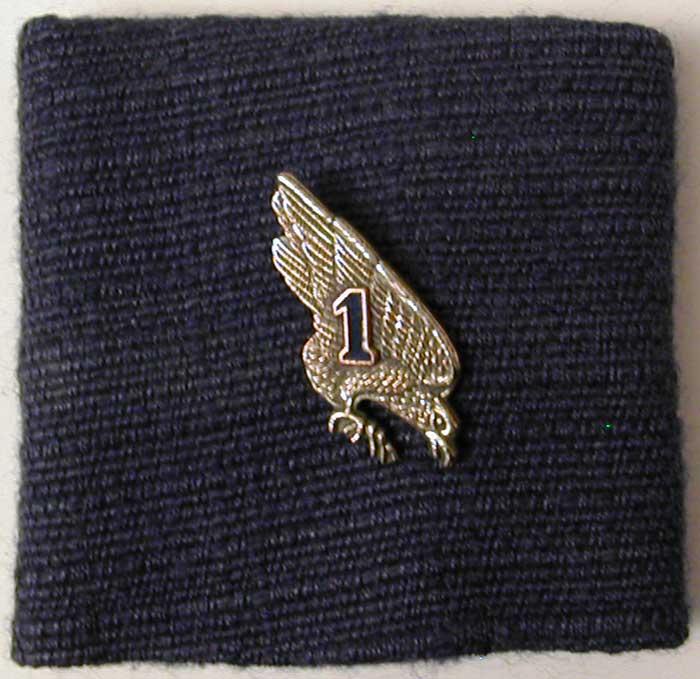 insignes du 13eme rdp 1-13_i10