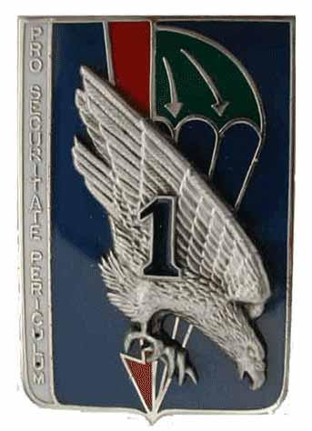 insignes du 13eme rdp 1_13ty12