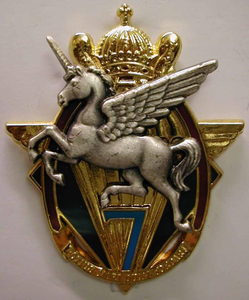 insignes du 13eme rdp 7_1310