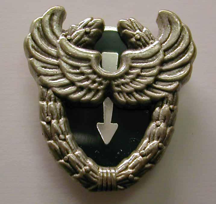 insignes du 13eme rdp Aceer10