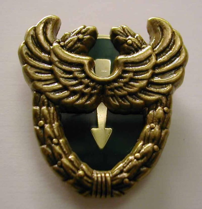 insignes du 13eme rdp Cer11