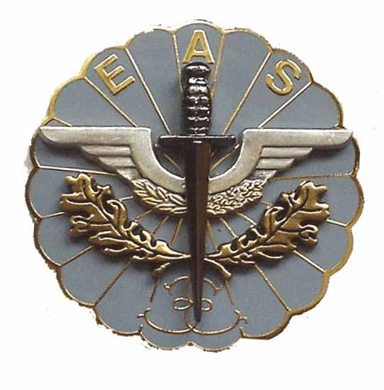 insignes du 13eme rdp Eas10