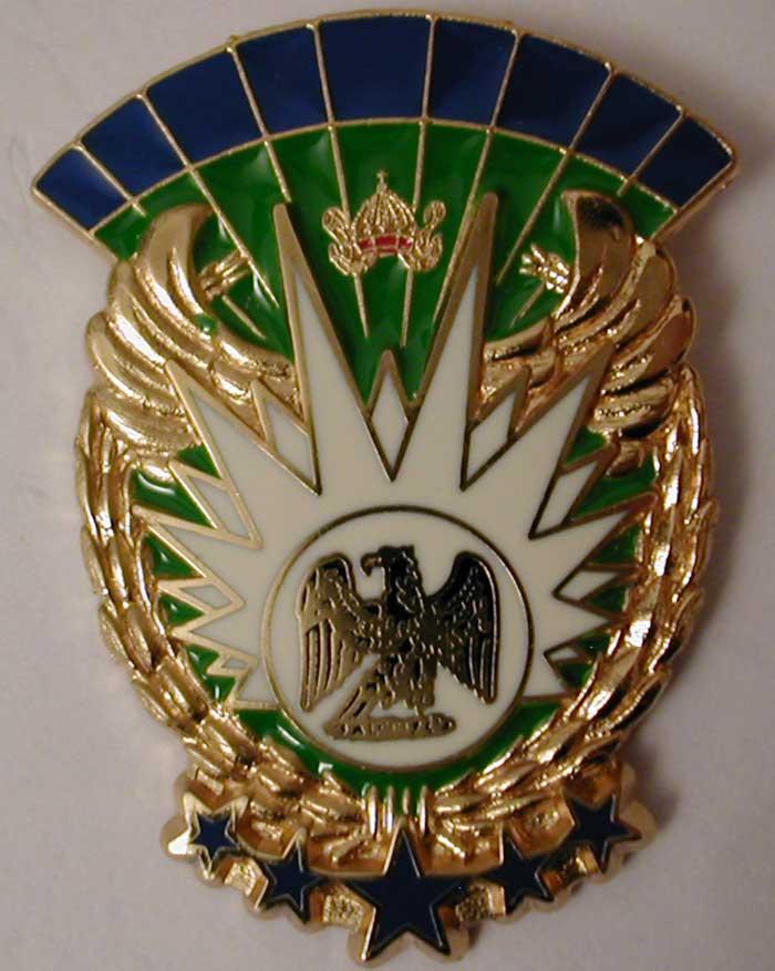 insignes du 13eme rdp Fia_vo11
