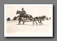 Adjudant gendarmerie Hongroise(1941) Tn_ugr10