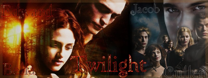 Demande de partenariat ; Twilight le RPG Twilig10