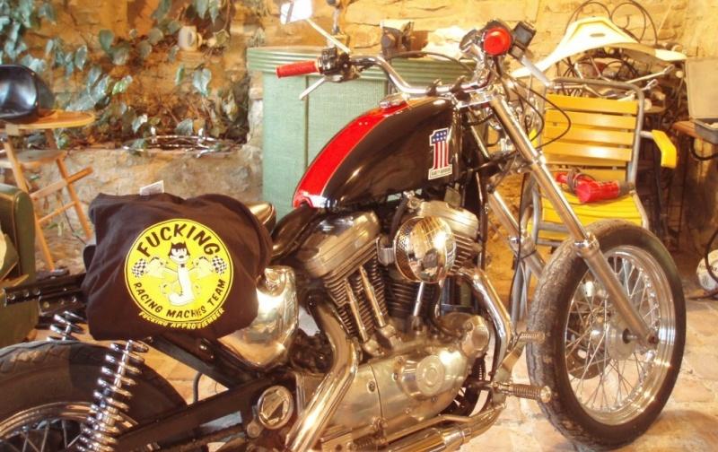 mon sporsts 89, simplement parfait... Harley12