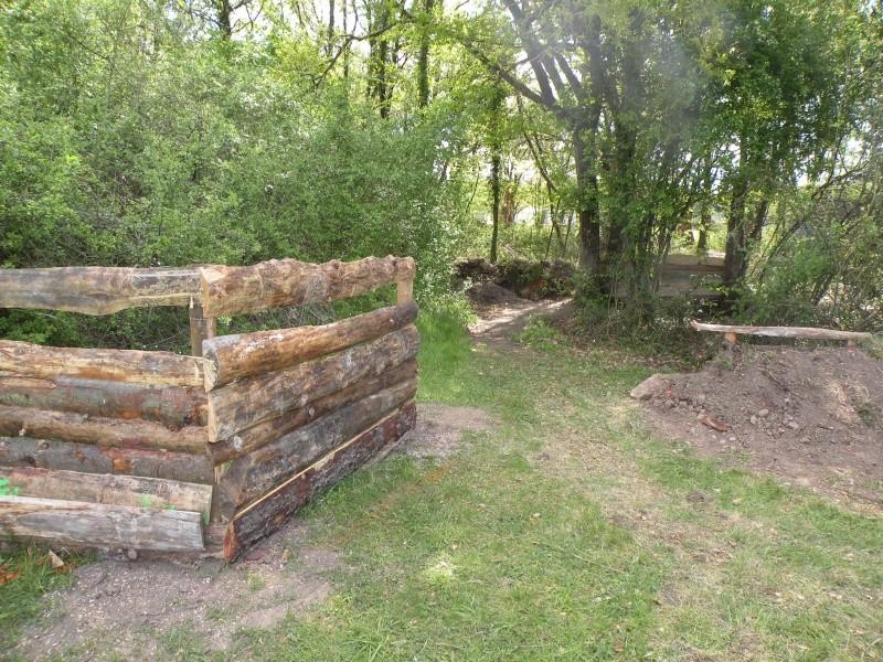 Choix de bois pour entourage jardin Dscn0723