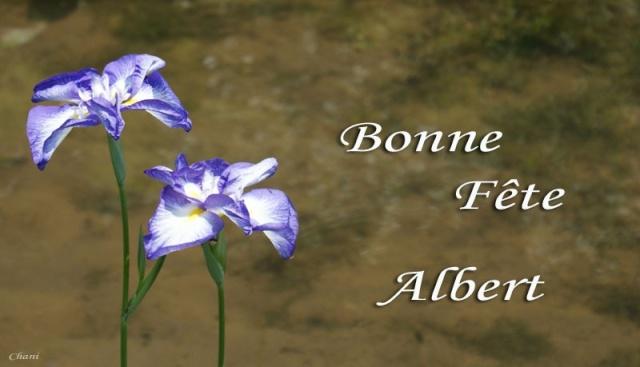 Bon anniversaire Albert Untitl10