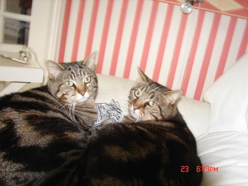 Titi & Nini Dsc00812