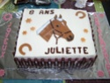 cheval, zèbre et licorne - Page 5 100_10