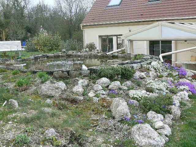 le bassin de rama45 P1010954
